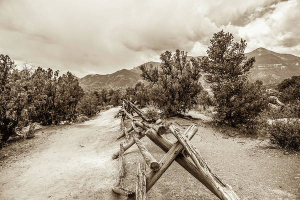 Photograph - The Old Path by Marilyn Hunt