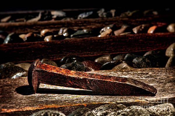 Spikes Photograph - The Old Railroad Spike by Olivier Le Queinec