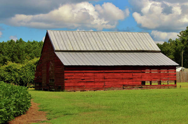 Photograph - The Old Red Barn by Cynthia Guinn
