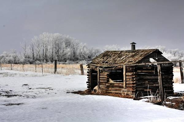 Photograph - The Old Shack by David Matthews
