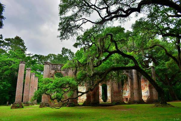 Photograph - The Old Sheldon Church Ruins by Lisa Wooten