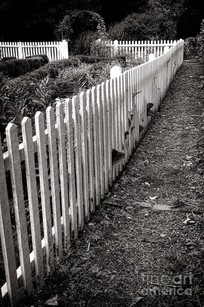 Photograph - The Old White Picket Fence by Olivier Le Queinec