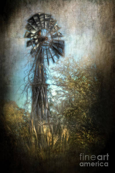 Photograph - The Old Windmill by Larry McMahon