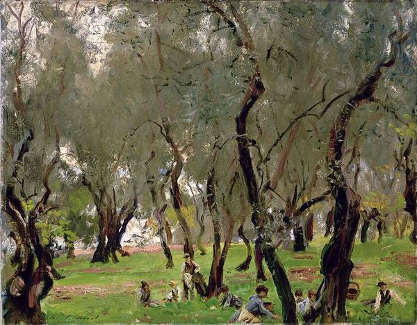 Pickers Wall Art - Painting - The Olive Grove by John Singer Sargeant