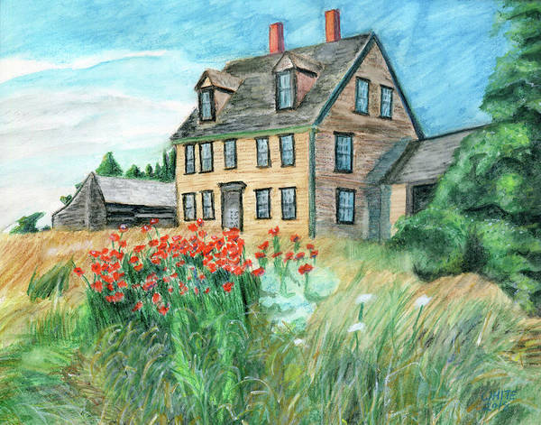 Painting - The Olson House With Poppies by Dominic White