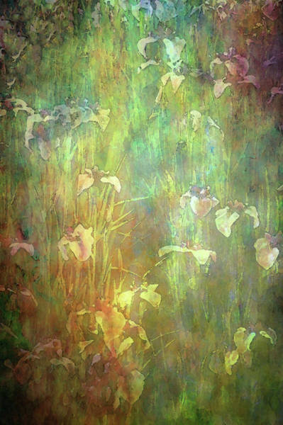 Photograph - The Opal Garden 2692 Idp_2 by Steven Ward