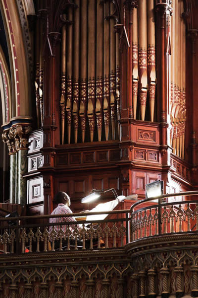 Photograph - The Organ Player by Tatiana Travelways