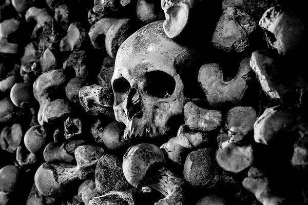 Charnel Photograph - The Ossuary St Leonards No7 by Lee Thornberry
