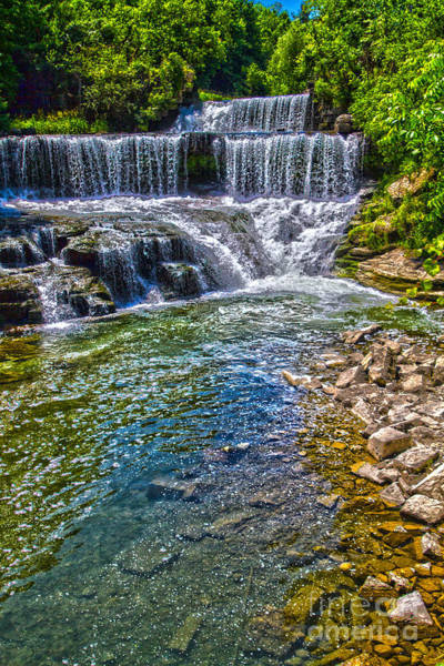 Photograph - The Outlet Trail Falls by William Norton
