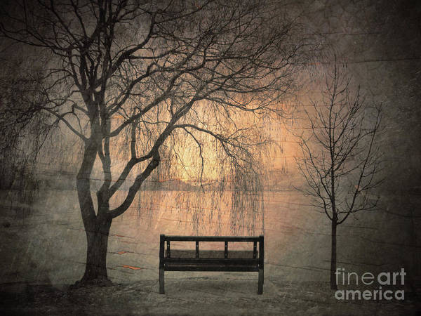Photograph - The Outlook by Tara Turner