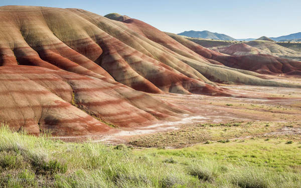 Photograph - The Painted Hills In Profile by Tim Newton