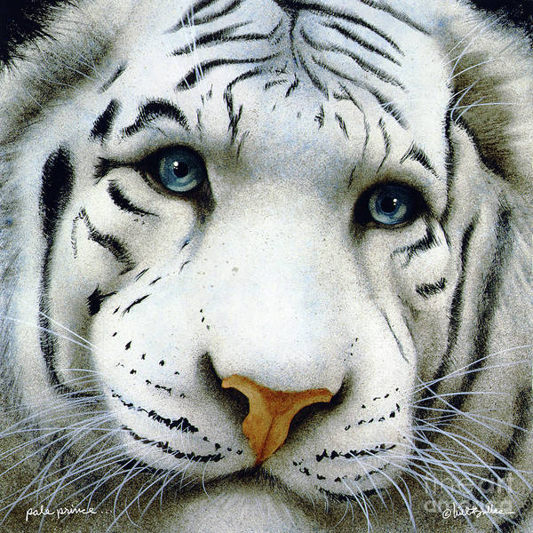 White Tiger Wall Art - Painting - The Pale Prince... by Will Bullas