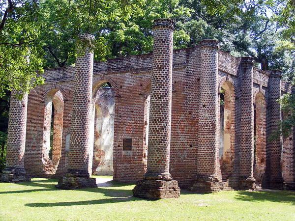 18th Century Photograph - The Palmetto Phoenix Old Sheldon Church Ruins by Elena Tudor