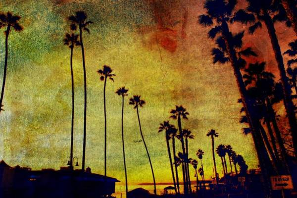 Wall Art - Photograph - The Palms by Kevin Moore
