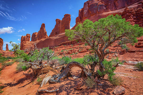 Geologic Formation Photograph - The Park Avenue Trail by Rick Berk