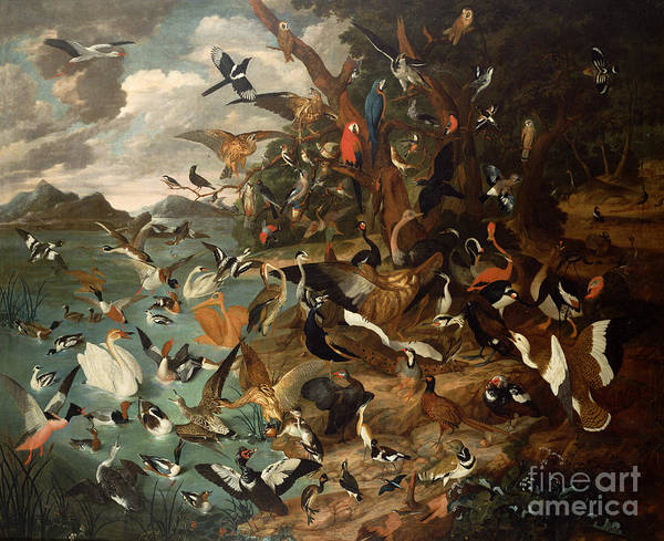 Poetry Painting - The Parliament Of Birds by Carl Wilhelm de Hamilton