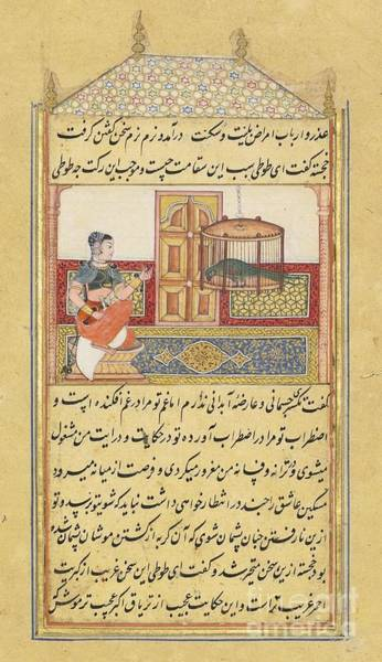 Painting - The Parrot Addresses Khujasta by Celestial Images