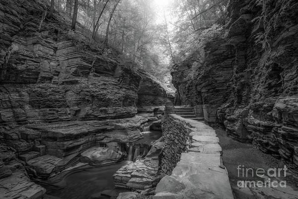 Watkins Glen Photograph - The Path Bw  by Michael Ver Sprill