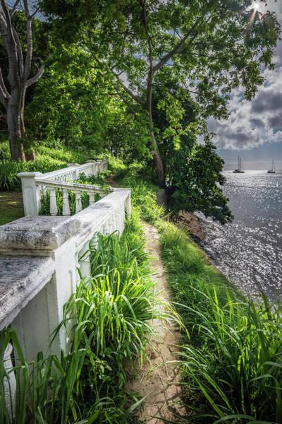 Photograph - The Path by Gary Felton