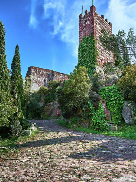 Photograph - The Path To The Monastery Of Escornalbou In Spain by Fine Art Photography Prints By Eduardo Accorinti