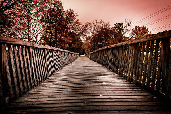 Photograph - The Pathway by Kenny Thomas