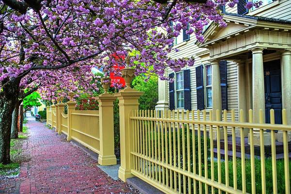 Photograph - The Peabody Essex Museum House At Spring Salem Ma Federal Street by Toby McGuire