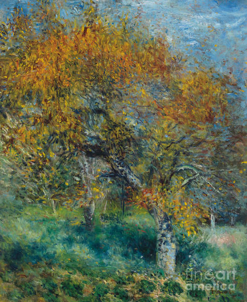 Changing Painting - The Pear Tree by Pierre Auguste Renoir