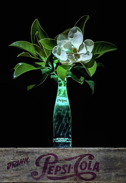 Photograph - The Pepsi And Magnolia Still Life by JC Findley