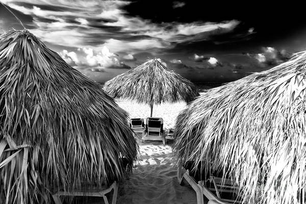 Wall Art - Photograph - The Perfect One At Punta Cana by John Rizzuto