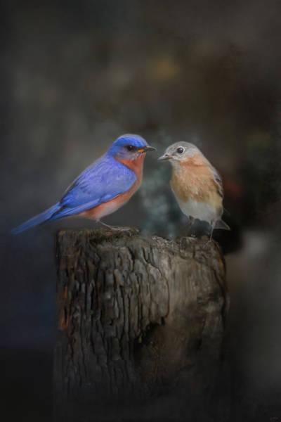 Photograph - The Perfect Pair by Jai Johnson