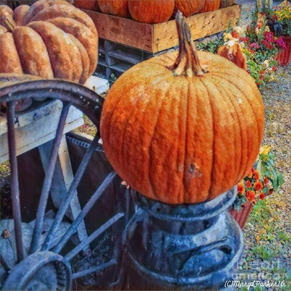 Digital Art - The  Perfect  Pumpkin by MaryLee Parker