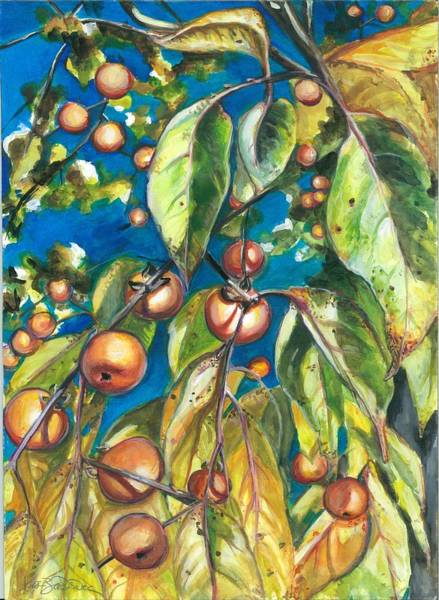 Persimmon Painting - The Persistence Of Persimmons by Lis Zadravec