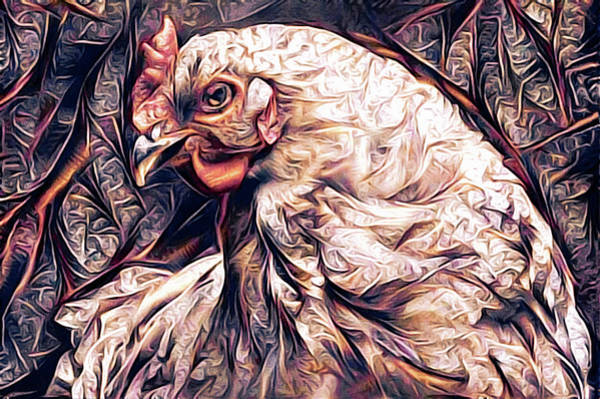 Mixed Media - The Petulant Hen by Susan Maxwell Schmidt