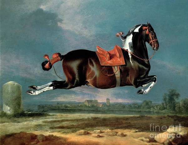Saddle Wall Art - Painting - The Piebald Horse by Johann Georg Hamilton