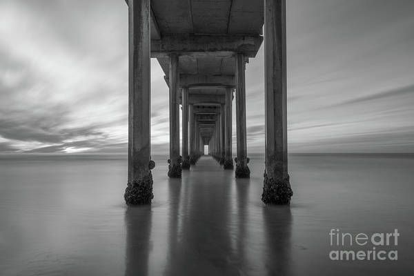 Photograph - The Pier  Bw by Michael Ver Sprill