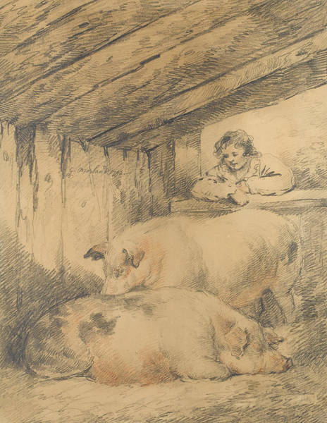Crayon Drawing - The Pig Sty by George Morland