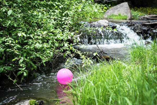 Photograph - The Pink Balloon by Mary Lee Dereske