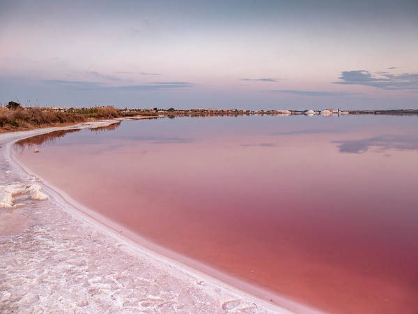 Wall Art - Photograph - The Pink Lake After Sunset by Mike Walker