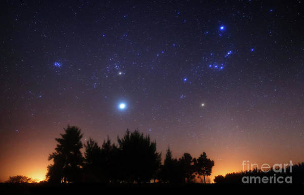 Wall Art - Photograph - The Pleiades, Taurus And Orion by Luis Argerich