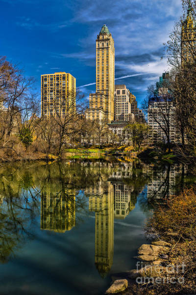Photograph - The Pond In Central Park by Nick Zelinsky