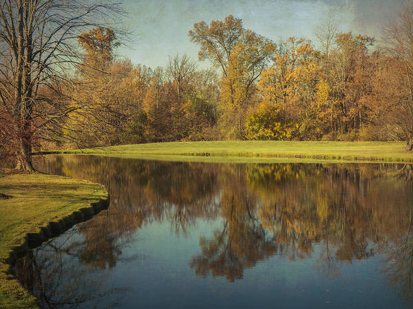 Photograph - The Pond by Michael Colgate