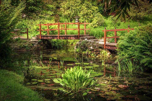 Photograph - The Pool In The Japanese Garden by Debra and Dave Vanderlaan