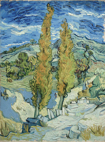 Almond Painting - The Poplars At Saint-remy by Vincent van Gogh