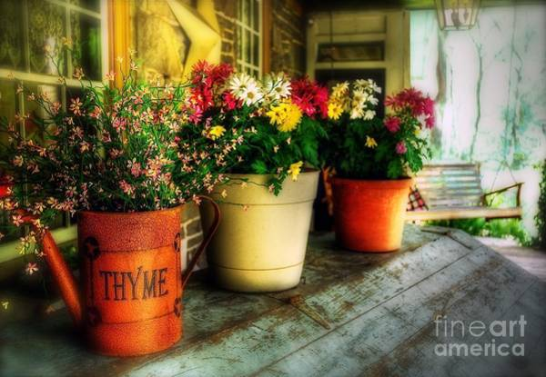 Photograph - The Porch Swing by Lois Bryan