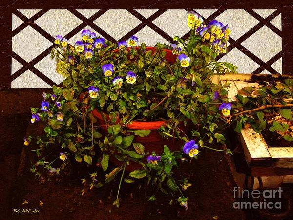 Painting - The Potting Shed by RC DeWinter