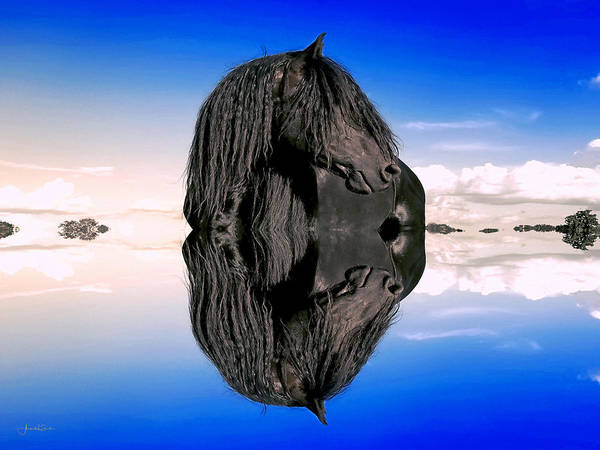 Photograph - The Power In My Reflection by Amanda Smith