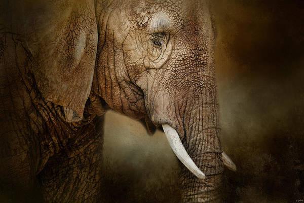Photograph - The Powerful Elephant by Jai Johnson