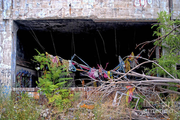 Photograph - Apocalypse Detroit 14 by Walter Neal