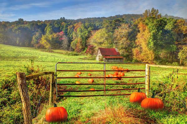 Photograph - The Pumpkin Patch by Debra and Dave Vanderlaan
