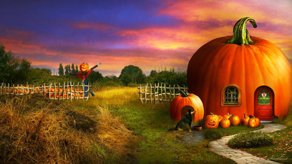 Photograph - The Pumpkin Patch by Mike Savad - Abbie Shores